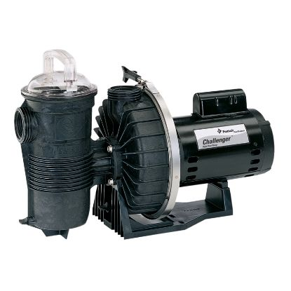 120 GPM 115V 230V WATERFALL PUMP ENERGY EFF W/ STRAINER 2IN  340351