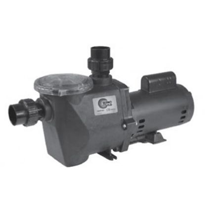 1 HP 230V 2 SPD ECONO FLO PUMP FULL RATED IG 2IN SKT UNIONS  ECONO-210