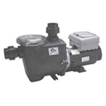 Picture for category Econo-Flo 2 Speed Pump