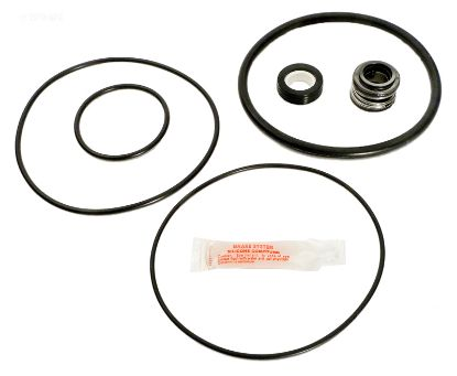 FLO-MASTER REPAIR KIT APCKIT34 APCK1029
