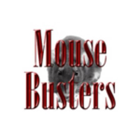 Picture for category Mouse Busters