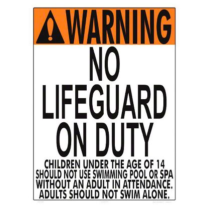NO LIFEGUARD (VA ONLY 1002WS1824E