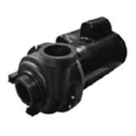 Picture for category Theraflo / Theramax Pumps